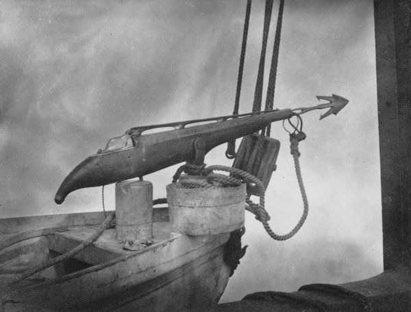 Гарпунная пушка китобойного судна фото