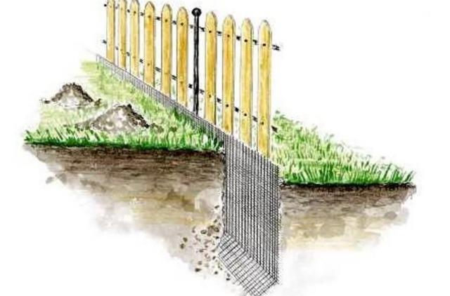 Забор от кротов фото