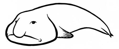 рисунок рыба капля