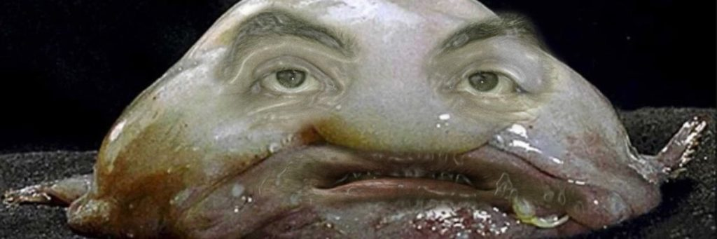интернет мем рыба капля